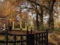 Herfst Haarzuilens 3