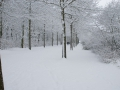 Valkenkamp in sneeuw 2 (1)