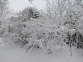 Valkenkamp in sneeuw 3 (1)