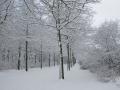 Valkenkamp in sneeuw 5 (1)