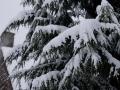 Valkenkamp in sneeuw 5