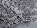 Valkenkamp in sneeuw 6