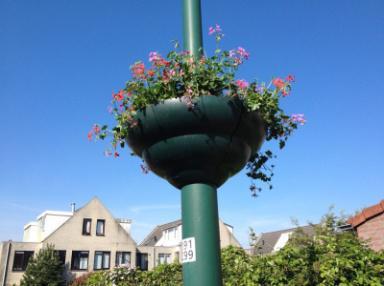 13 mei: De hanging baskets zijn weer gevuld !