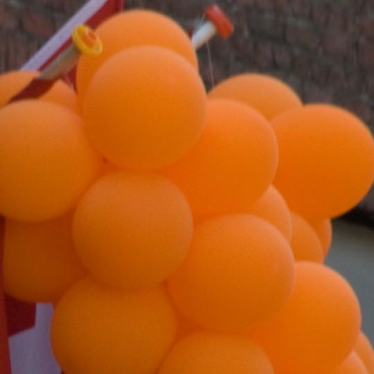 25 april: Oranjefeesten