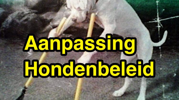 dec: Hondenbeleid Stichtse Vecht aangepast