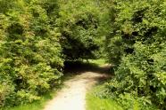 Bericht in VAR: Toekomst park Maarssenbroek onzeker