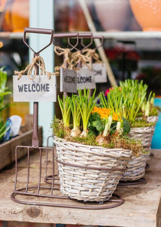 Liefhebbers van tuinen en tuinieren opgelet!